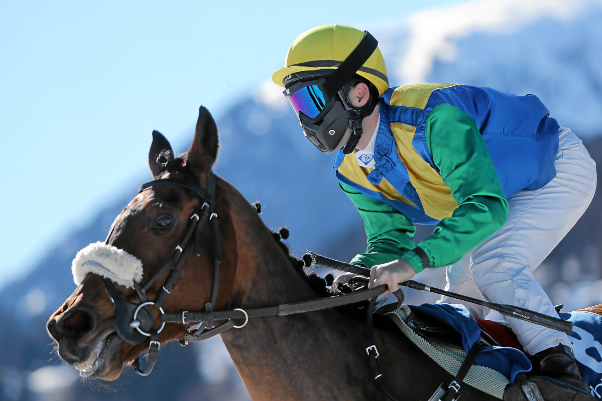 White Turf Horses Snow And Oysters Discover Germany